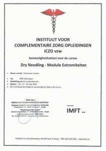 Certificaat Dry Needling